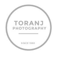 logo-demo4